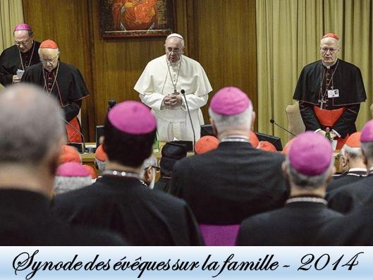 Synode sur la famille 2014